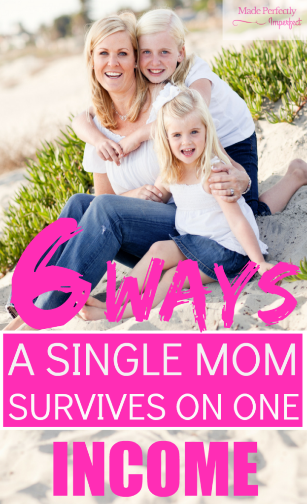 6 Ways a Single Mom Survives On One Income Becoming a stay at home mom was the best decision our family made. Now that I'm a single mom, I have discovered secrets that help me to stay at home with my children.